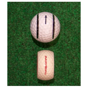 Putter Wheel Putting System